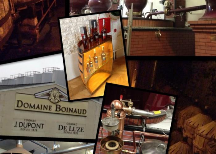 photos de la visite au domaine Boinaud - cognac De Luze