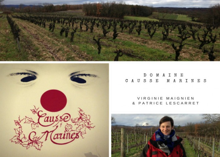 Montage photo - Virginie Maignien - Domaine Causse Marines - Gaillac