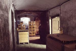 Cave-de-la-maison-des-Luigi